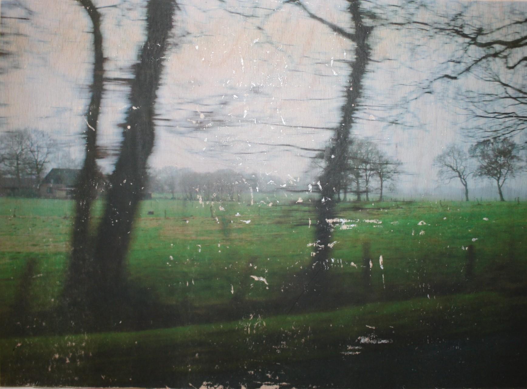 Hadeln Farbe (2013) A4