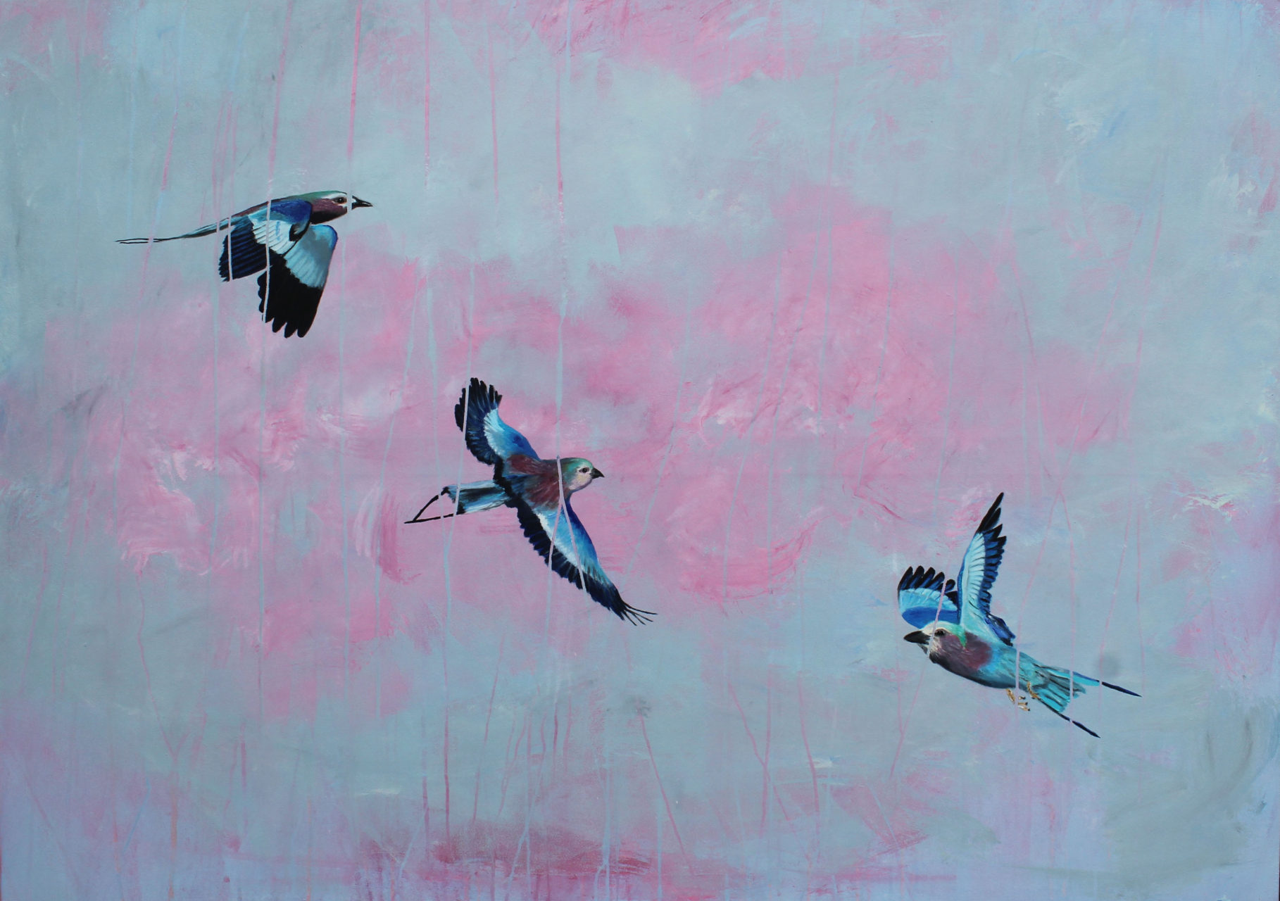 Lilac Breasted Rollers, 2016, mixed media, 100 x 140 cm